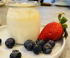 Sugar Free Plain Yoghurt