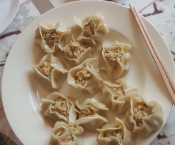 Steamed Carrot and Chicken Dumplings
