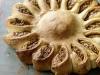 Sun-Shaped Bread