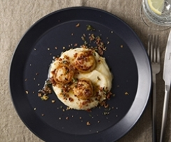 Seared Scallops, Parsnip Purée and a Pancetta Crumb