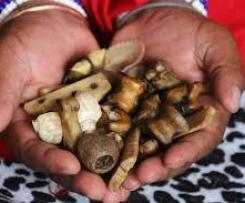 +27 60 420 8158 Healer On Whatsap Sangoma Help Online @ Traditional Herbalist Based In Pretoria